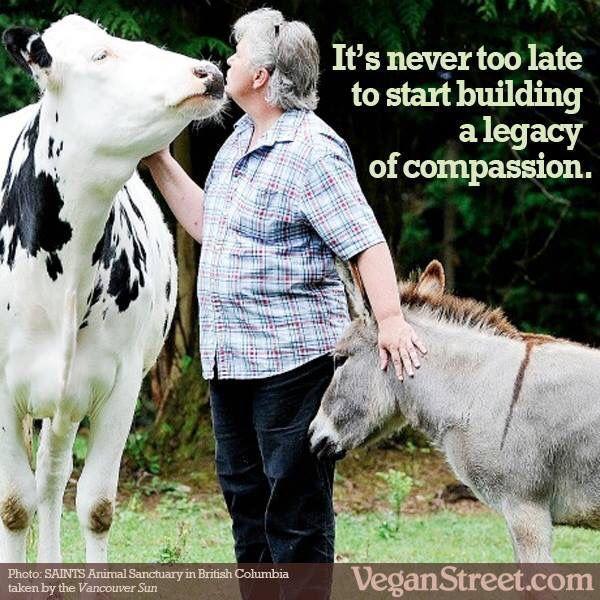 RT if your only regret is not going #Vegan sooner!  Photo: @veganstreet https://t.co/UIBE2hhZS6