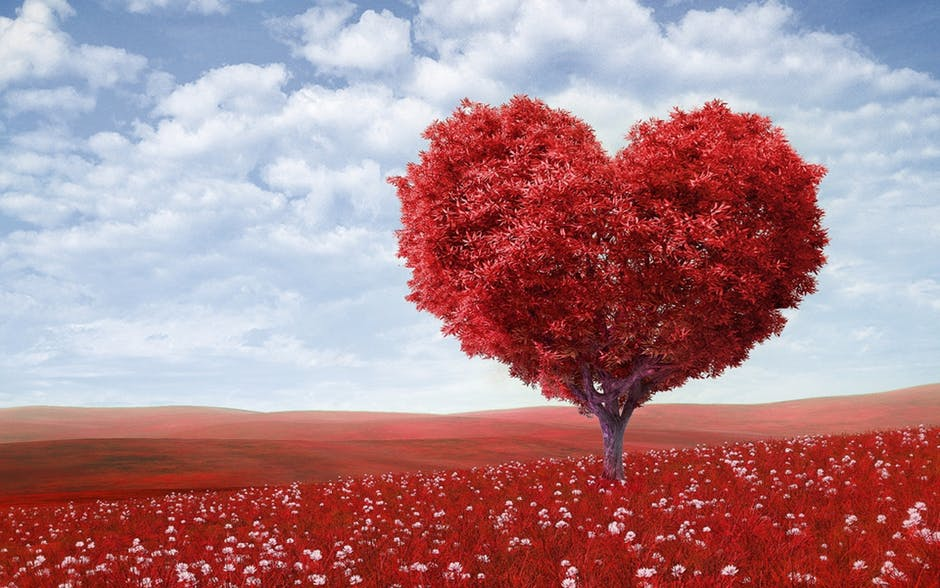 4 ways to Gift Your Love https://t.co/hD0m2B9Ecg #mhsm #mentalhealth
