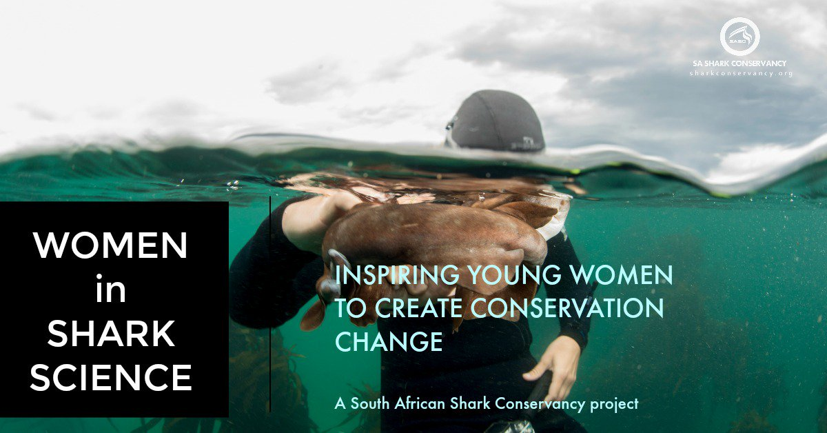 Our annual #WomeninSharkScience competition is open! Are you a young woman b/w 18-35? Love oceans &amp; #sharks? Want to drive conservation change? DM us for competition details &amp; find out how to join our team for a totally jawsome month in November #WomenInSTEM #scicomm #HopeSpot <br>http://pic.twitter.com/R8uLotXpoH