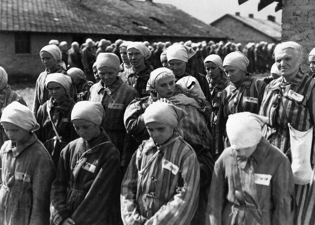 L'Olocausto è una pagina del libro dell'Umanità da cui non dovremo mai togliere il segnalibro della memoria  Primo Levi  #SettimanaDellaMemoria con               #22Gennaio