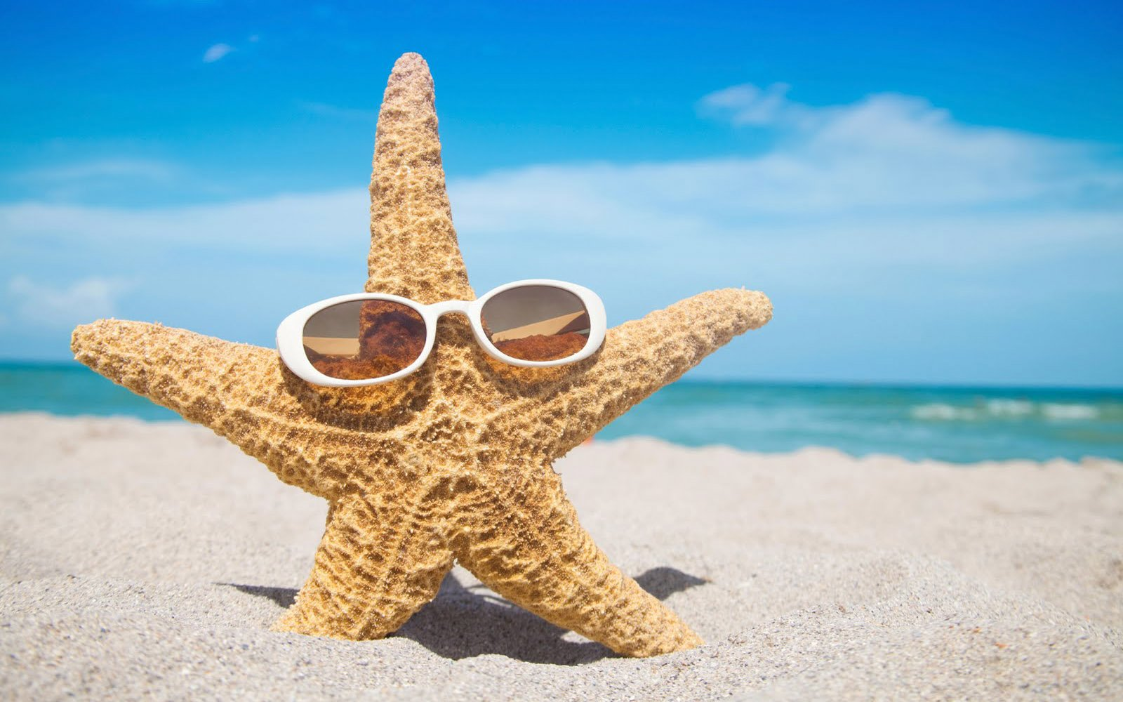 Любимому парню, красивые смешные картинки с морем