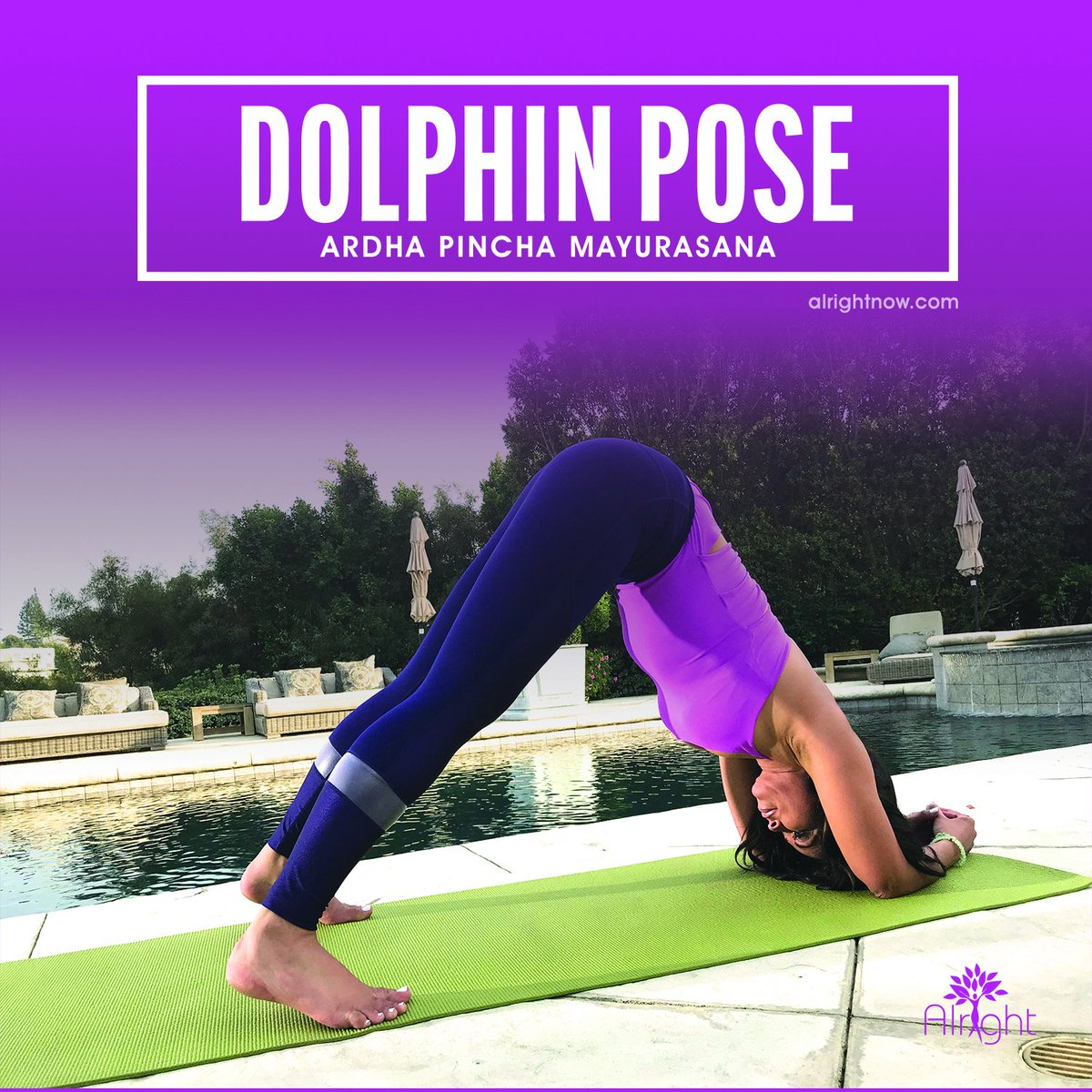 #DolphinPose Can help headaches insomnia fatigue, calm brain, strengthen arms/legs, aid digestion & menopause/menstrual probs, stretch shoulders hamstrings arches calves, fight osteoporosis. Give it at try! C/O  4 mhttps://t.co/8TYTWrLZgpore info   #ArdhaPincha#yoga#AlrightNow