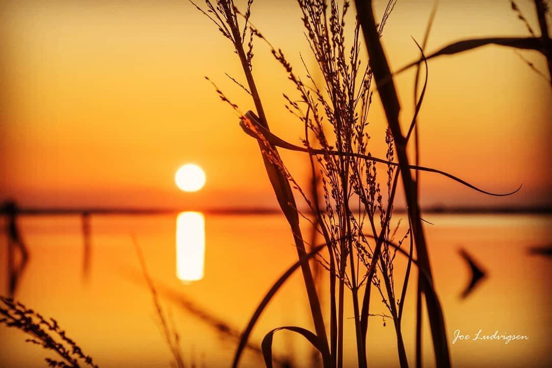 RT @VisitPensacola: G ☀️ ☀️ D Morning 📷 Joe Ludvigsen #explorepcola #lovefl https://t.co/H5UvUtunZ5