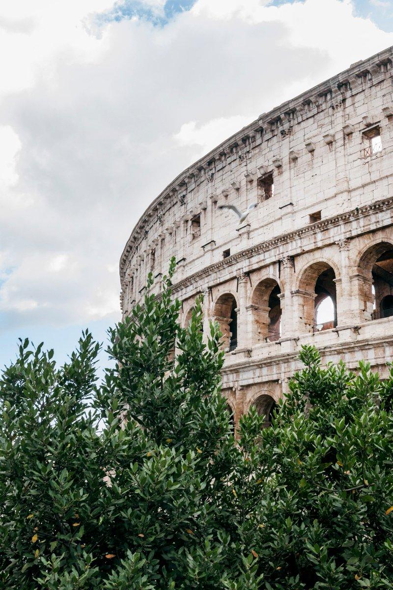 RT @GiulioTolli: Colosseo Portrait 📸  #roma #rome #colosseo https://t.co/bUFFhKBrYg