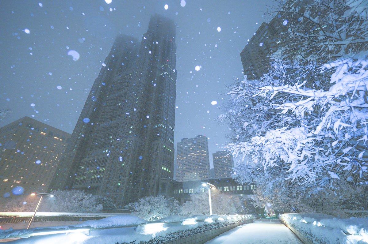 雪で染まる新宿。美しかった。