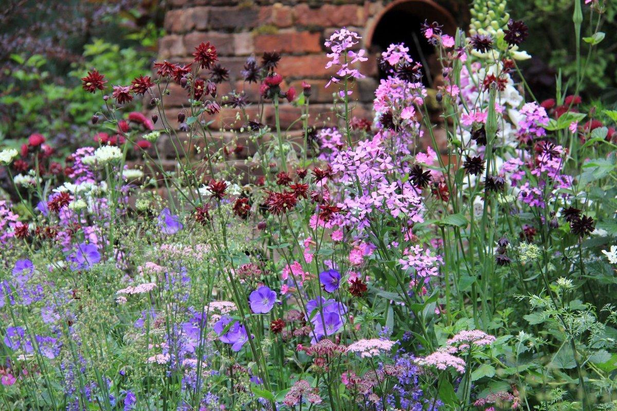 world love flowers on twitter loveflowers english garden englishgarden garden flowers httpstcowgbmwiqgjy for all your flower - English Garden Flowers