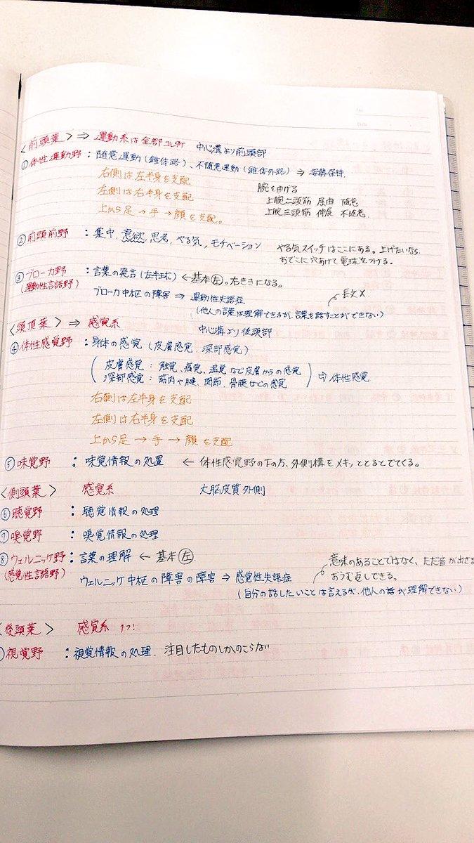 学生 方法 看護 勉強 ノートのまとめ方【看護学生向け】|シュリ勉!