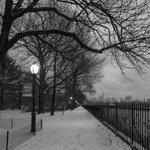 Image for the Tweet beginning: Central Park on a brooding