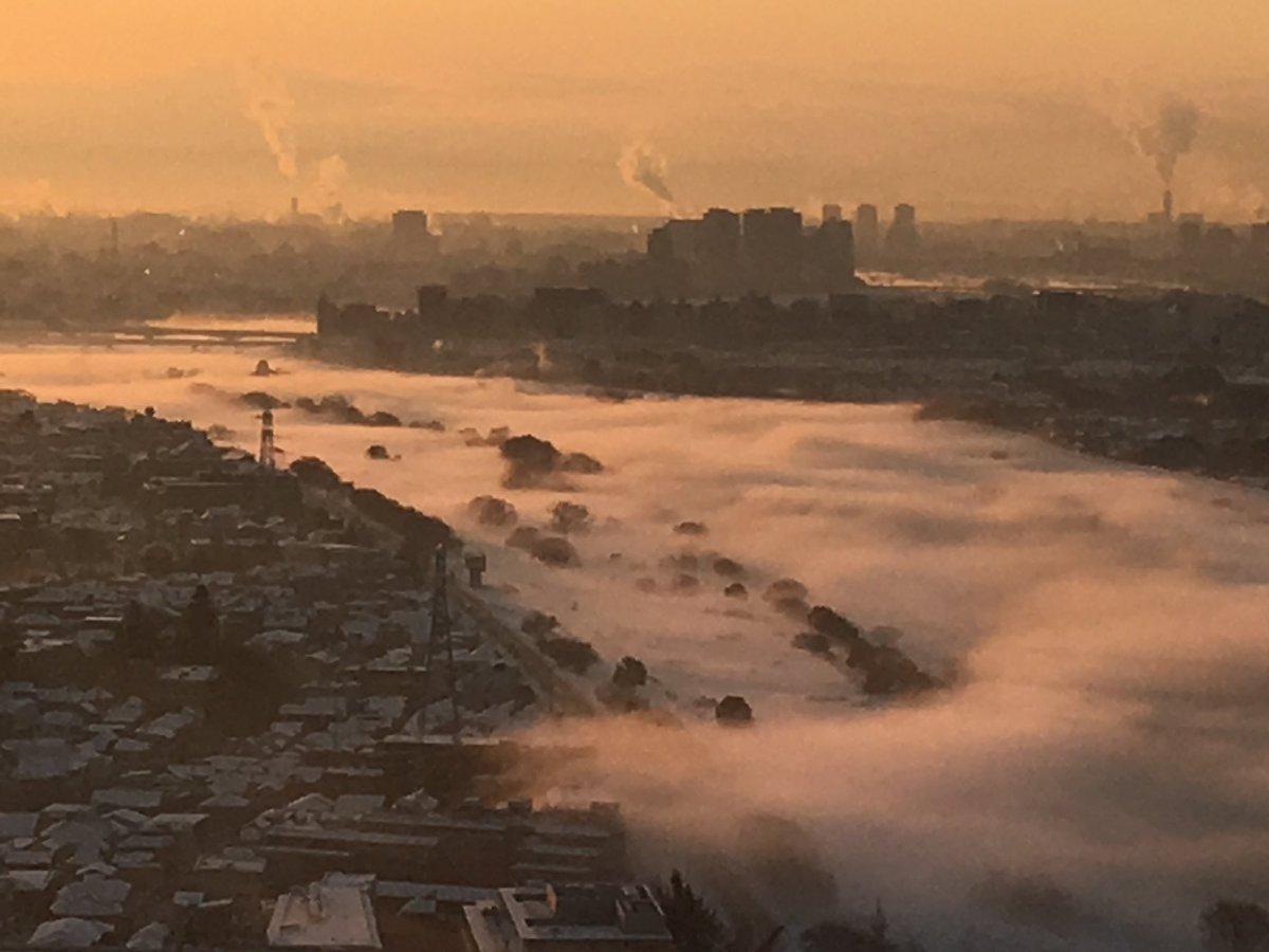 多摩川が凄いことに、、?#多摩川