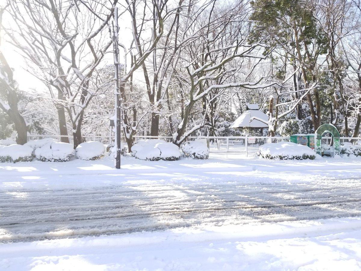 #今朝 #雪景色 #東京 https://t.co/fbnKRTrIV5