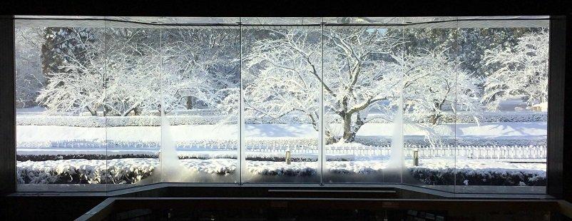 歴博の硝子屏風から城址公園の桜を眺めると、まるで絵画のような白銀の世界が目の前に迫り、心安らかになりました。いつもと違う歴博の姿を、是非ご覧ください。#歴博 #佐倉ミュージアム