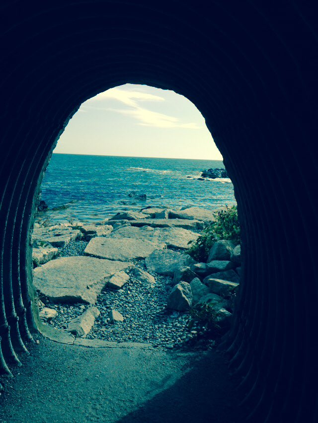 There's beauty at the end of the tunnel. #Newport #RhodeIsland #cliffwalk ##newportview #water #waterview #ocean #oceanview #hiking #hikingadventures #hikingviews #vacations #vacation #vacationmode #beauty