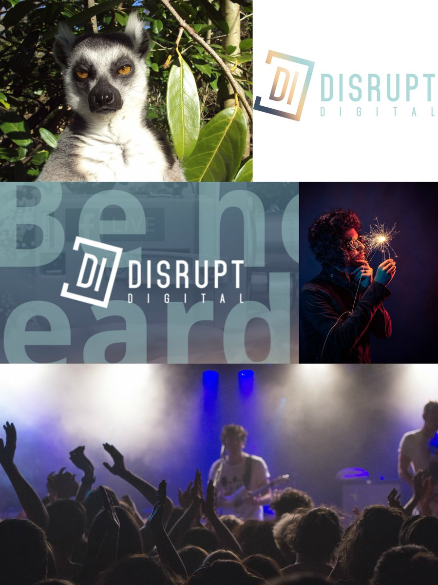 Disrupt Digital has worked with companies from a variety of industries. Check out our portfolio to see a taster of some of the exciting projects we have been involved in recently. https://buff.ly/2mXIC0f  #disruptdigi #disruptdigital #workworkwork