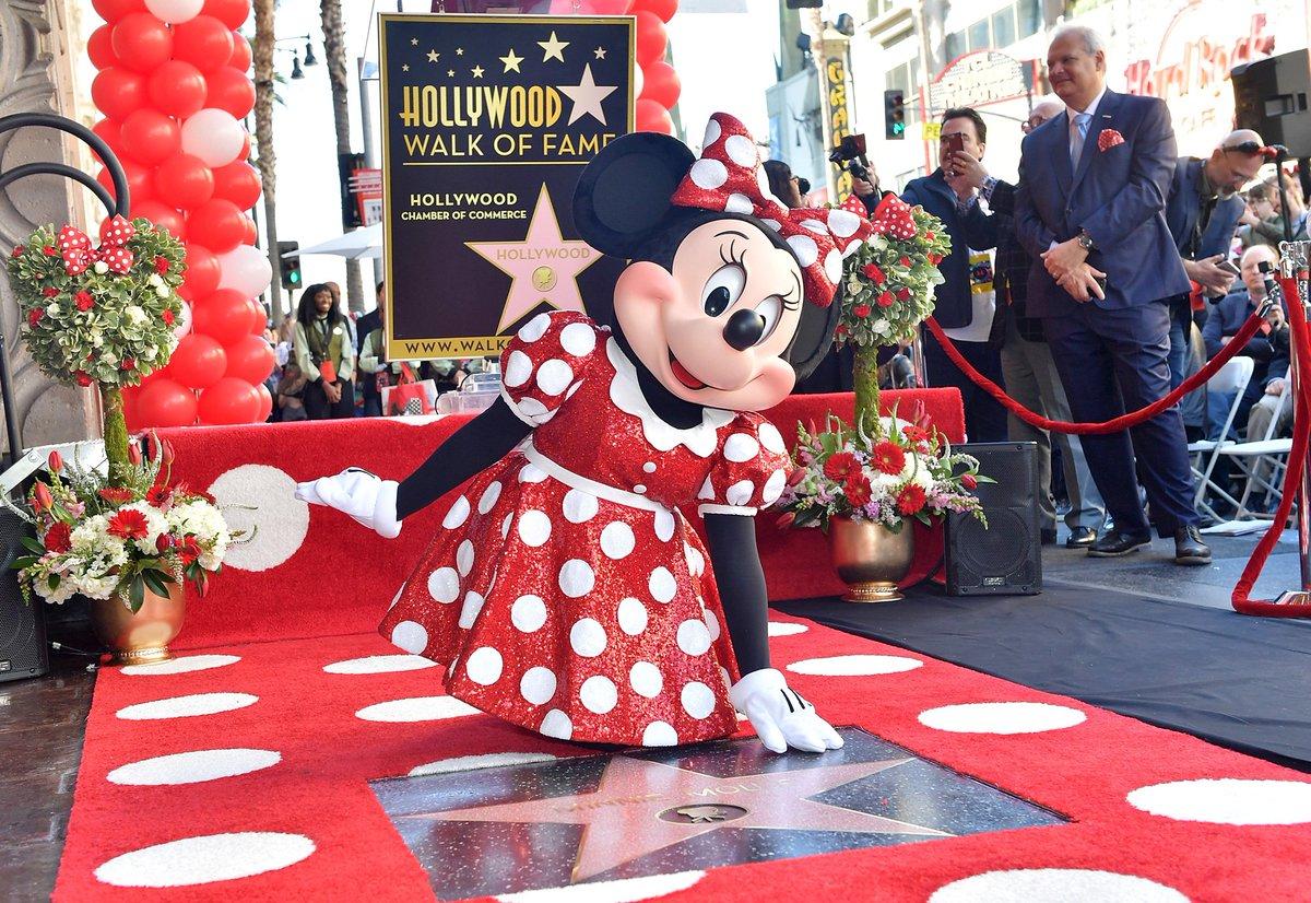 ハリウッドのウォーク・オブ・フェイムで、#ミニー のスター殿堂入りをお祝いするセレモニーが、日本時間の1月23日に行われました🎉✨  「ミニーマウス」の名前が刻まれた星型のプレートが、歩道に埋め込まれています⭐️  セレモニーのレッドカーペットは赤と白の水玉模様♪ #HollywoodWalkofFame