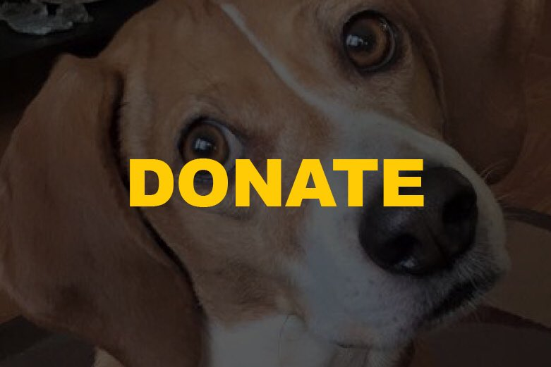 Support the mission of your local animal cops. Please consider a donation to the Passaic County SPCA today! ❤️ http://pc-spca.org/donate/