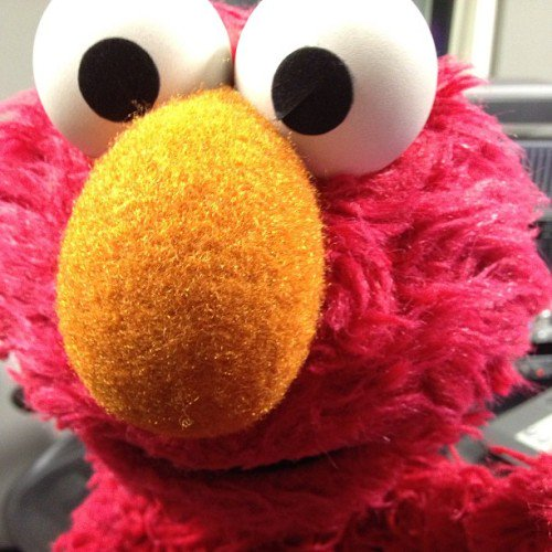 elmo on twitter elmo tried to take a selfie it s harder than it