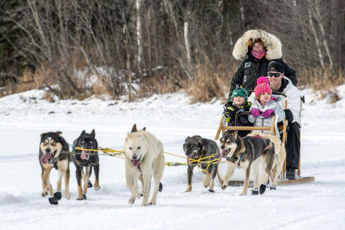 Let's go! An #airman and his family take a 🛷  dog ride at Joint Base Elmendorf-Richardson, #Alaska. #JBER