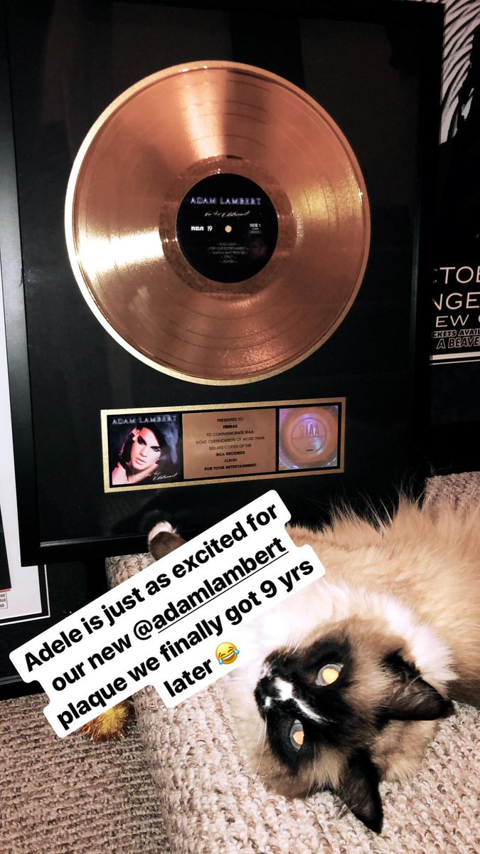 .@ferras got gold certification of more than 500.000 copies of @adamlambert &#39;s album #ForYourEntertainment of the RCA records !  source: Ferras&#39;s ig story   https:// instagram.fhrk1-1.fna.fbcdn.net/vp/64970a54007 404826243ed0736db0176/5A6C3498/t51.12442-15/e35/26186259_881640592004463_337512325554634752_n.jpg?se=7&amp;ig_cache_key=MTY5OTg1OTM3MzE4OTY5NzY5Nw%3D%3D.2 &nbsp; …  … &#39;Adele is just as excited for our new @adamlambert plaque we finally got 9 yrs later&#39;<br>http://pic.twitter.com/OLxBTXEib2
