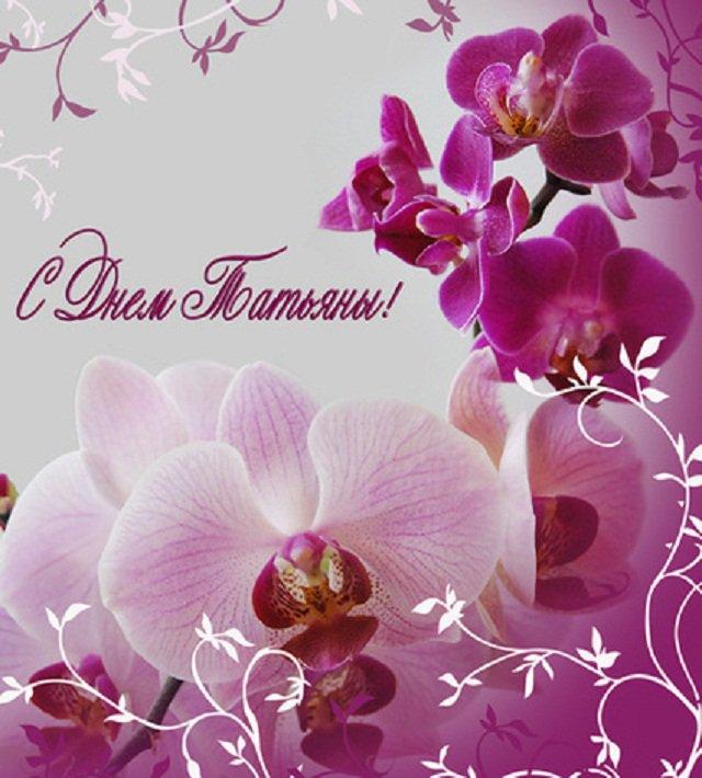 Татьянин день 25 января поздравления картинки, стиле