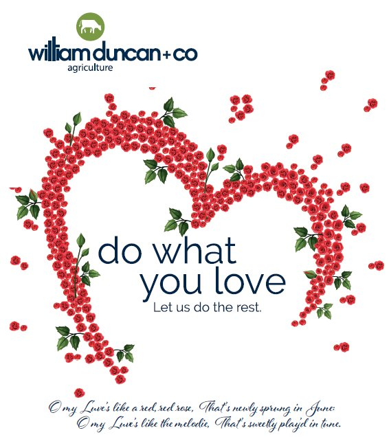 William duncan co on twitter happy burns daynight william duncan co on twitter happy burns daynight burnsnight2018 burnsday m4hsunfo