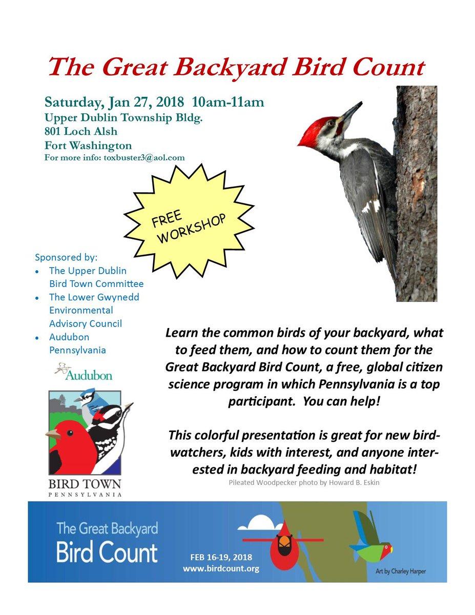"""Common Backyard Birds audubon pennsylvania on twitter: """"don't miss this great program"""