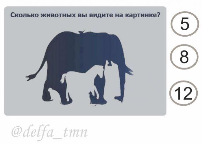 все сколько животных видишь на картинке ответ ходу давно