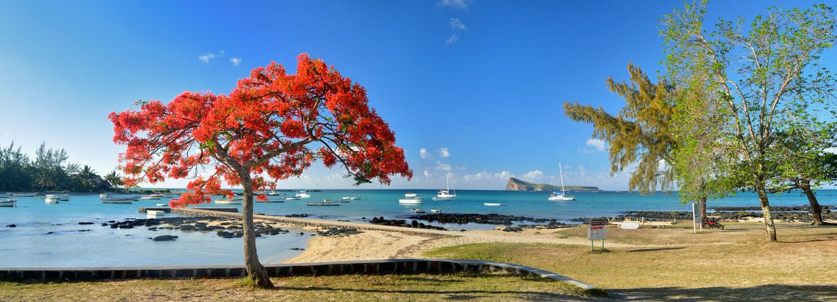 disadvantages of tourism in mauritius The image of mauritius that tourist brochures like to portray usually features the crystal-clear turquoise waters of the indian ocean lapping beaches of perfect white sand.
