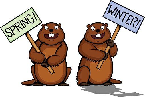 February groundhog. Mcwilliam mustangs on twitter