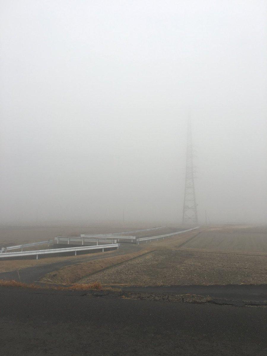 通勤途中、見事な霧です。