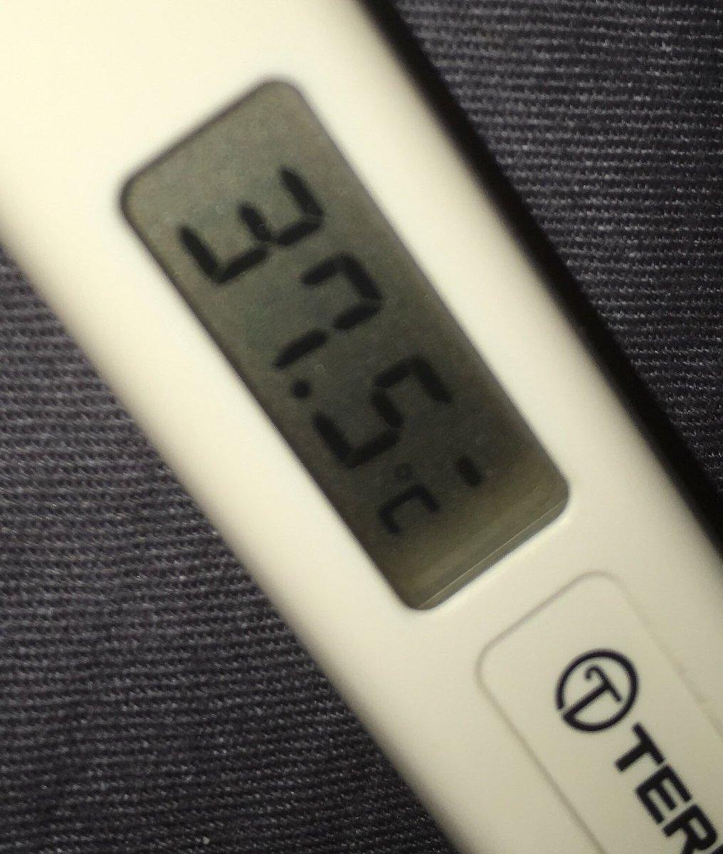 が 続く 微熱