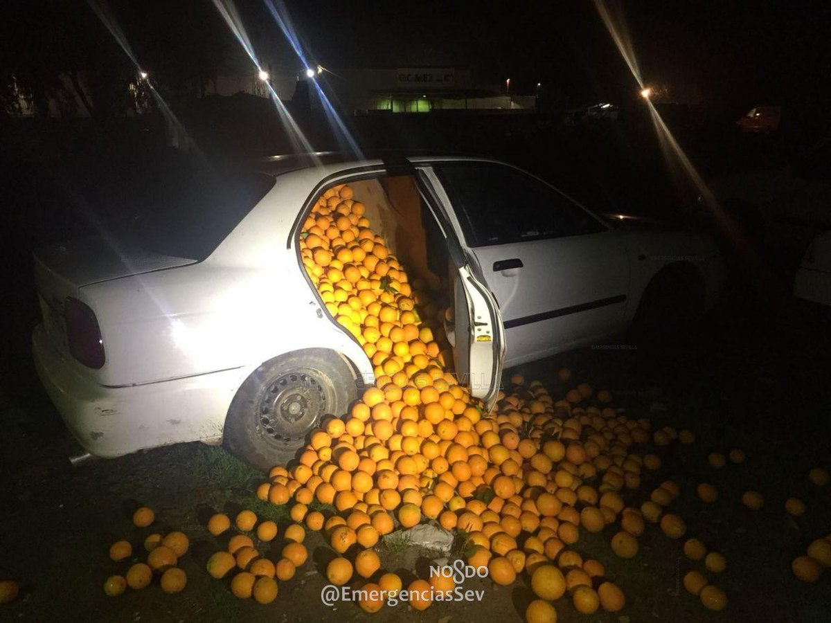 Spanish police find 8,000lbs of stolen oranges in traffic stop