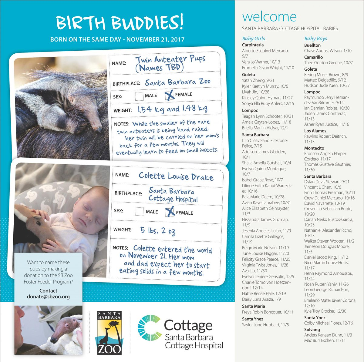 ca0ac6ac4 ... Santa Barbara Zoo on the same day. They will always have a special  birthday bond! Here's a look at the other Cottage Health babies we're  welcoming too!