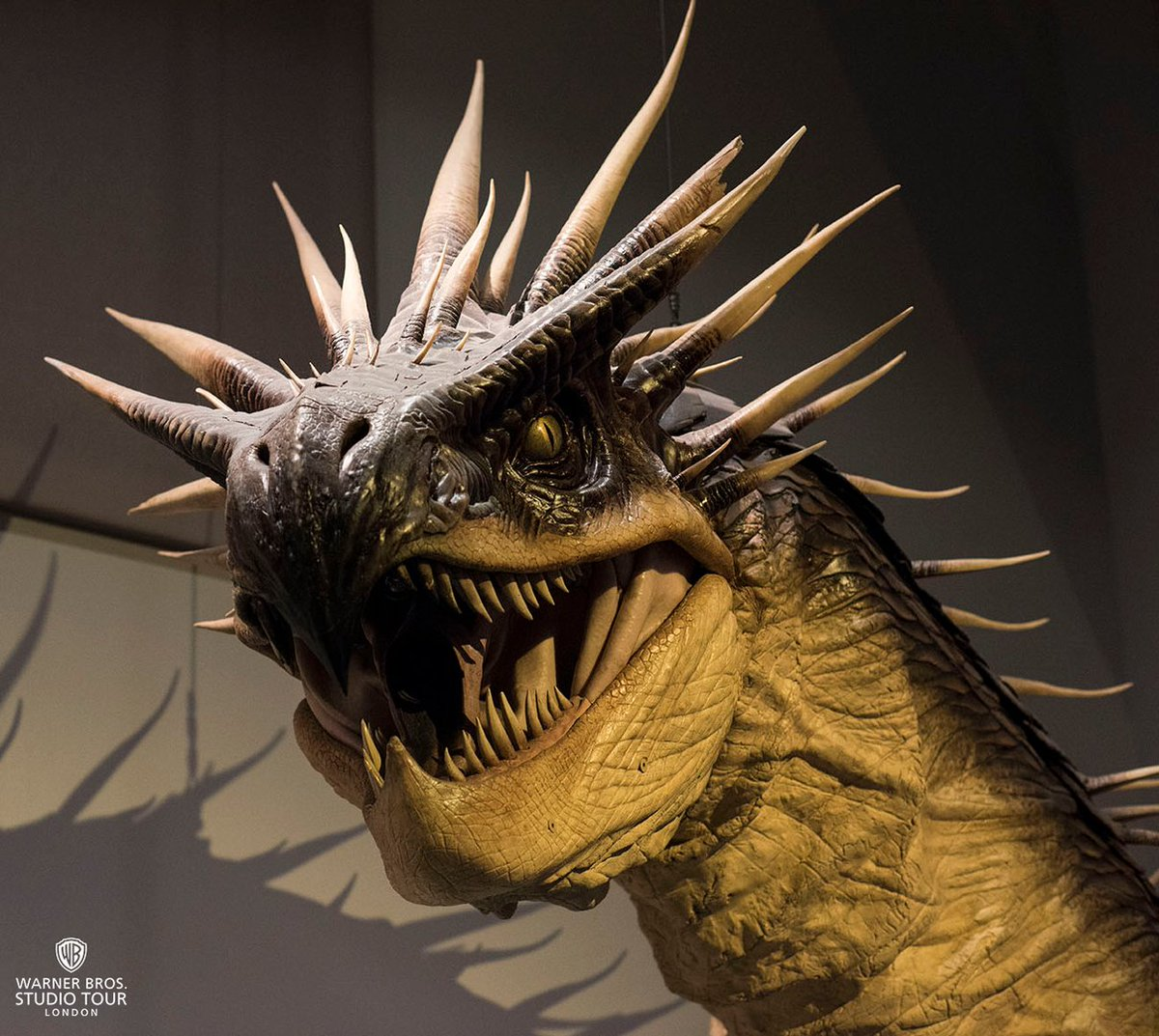 pottermore on twitter a real life dragon now that s movie magic