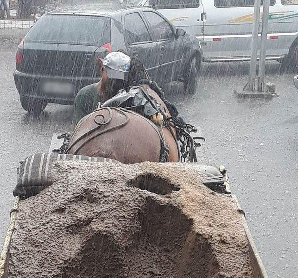 Foto de homem abraçando cavalo durante chuva em Pernambuco viraliza: 'Tinha que proteger meu melhor amigo' https://t.co/okpedy3oXC #G1