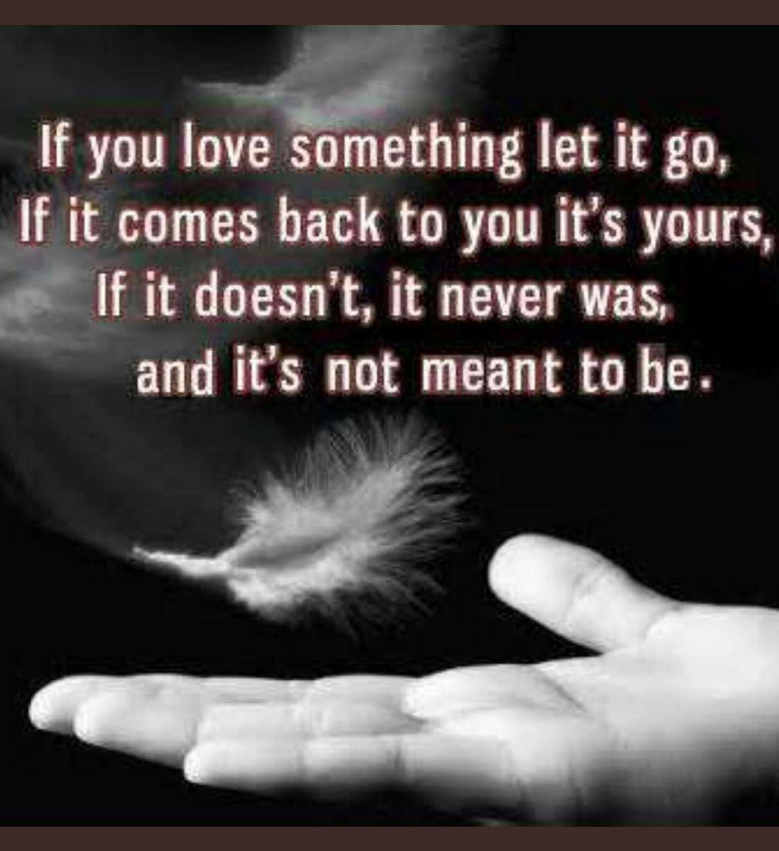 Inspirational Quotes On Twitter If You Love Something Let It Go