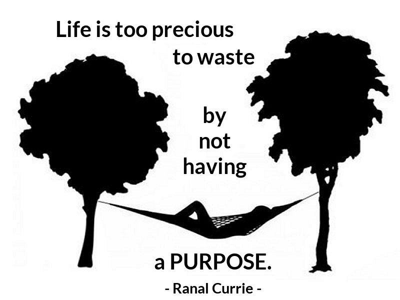 Ranal Currie On Twitter Life Is Too Precious To Waste By Not