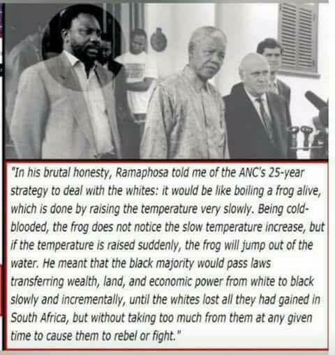 Image result for The ANC and Ramaphosa's 1994 plan for the whites