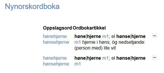 Nynorsk ordboka