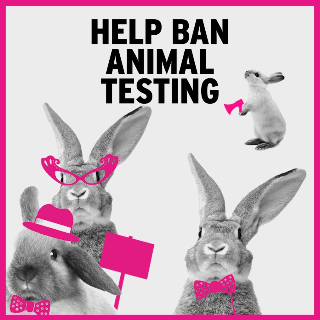 ban animal testing Ban animal testing in the uk and also importing products which have been tested on animals animal testing has also sometimes been used for developing:.
