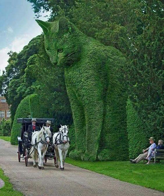 巨大な猫が庭園に出現!? 植物を刈り込んだ造形物トピアリーがスゴすぎる!!