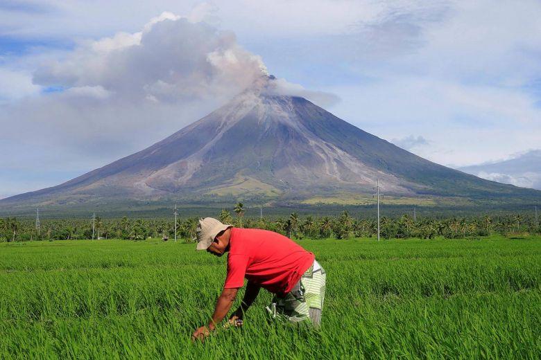 philippine rice farmers socioeconomic status