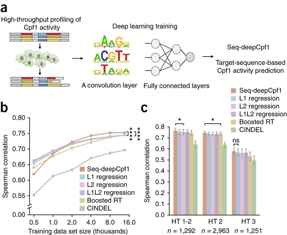 deep learning improves prediction of crispr cpf1 guide rna activity