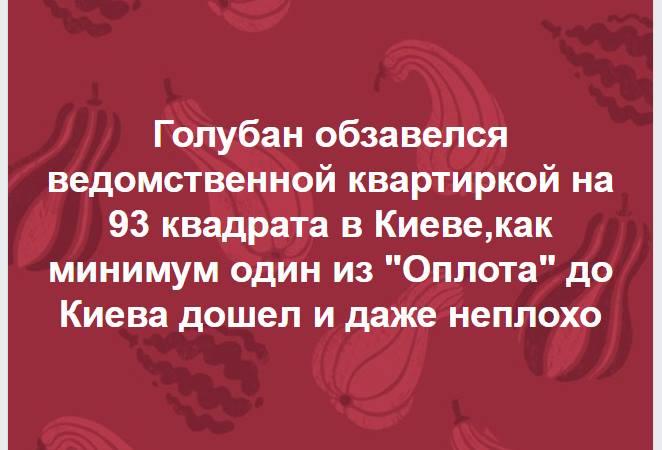 Необходимо откорректировать законодательство о народных дружинах, - Луценко - Цензор.НЕТ 7800
