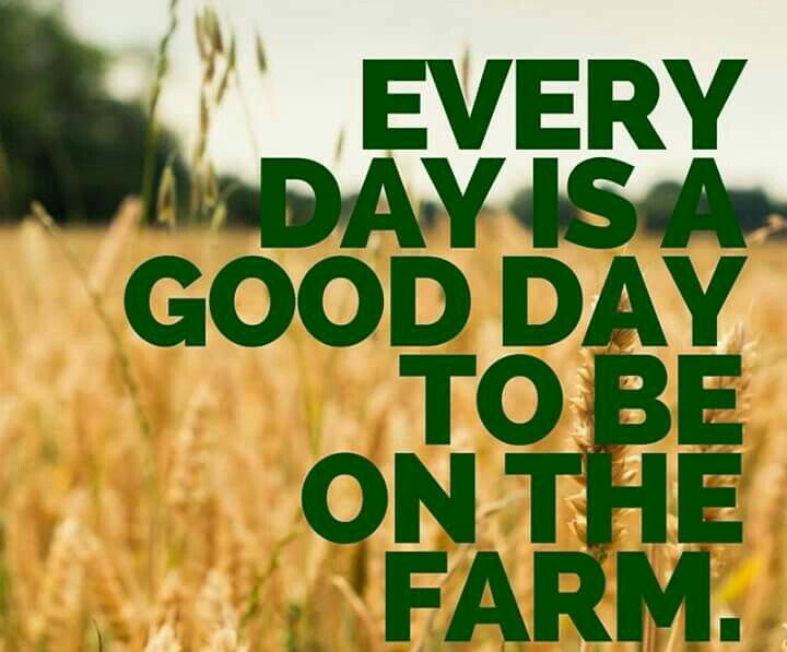 Farm Quotes Amazing Farm Medicine Farmmedicine  Twitter