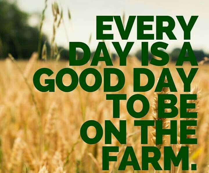 Farm Quotes Interesting Farm Medicine Farmmedicine  Twitter
