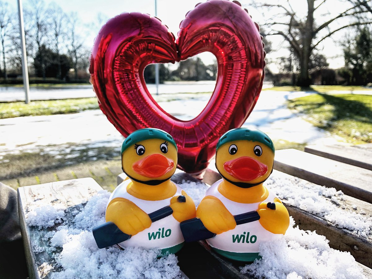 Happy #ValentinesDay! Spend more time with your beloved! #wilove #ducksinlove #rowing
