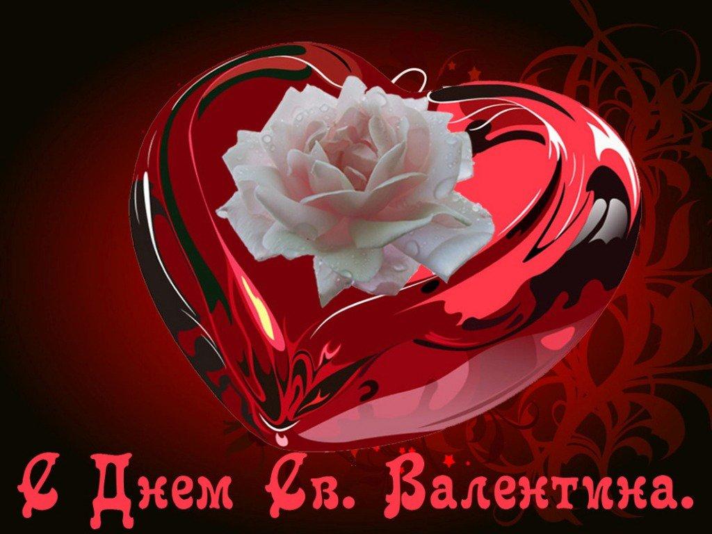 Открытки к празднику влюбленных, поросенок гифка