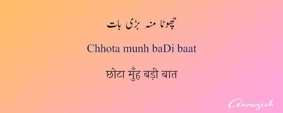 Usage meaning in urdu