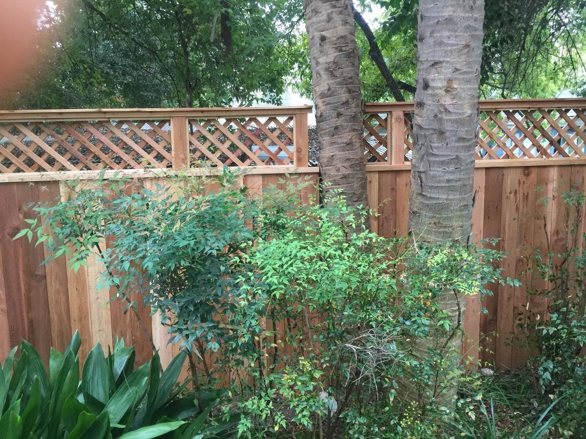 Cedar Fence With Lattice Has Been Published On City Co Of San Antonio