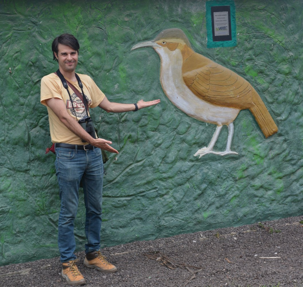 #Istudyevolution of birds to understand why there are so many smallish brownish feathered jobs in South America. #DarwinDay
